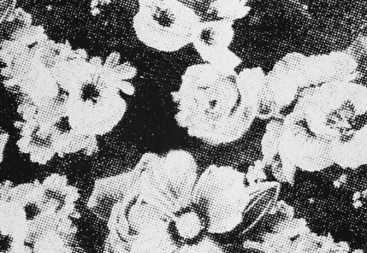 Khryo-Floral-Bouquet